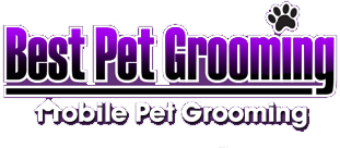 Pet Dog Cat Grooming Ottawa